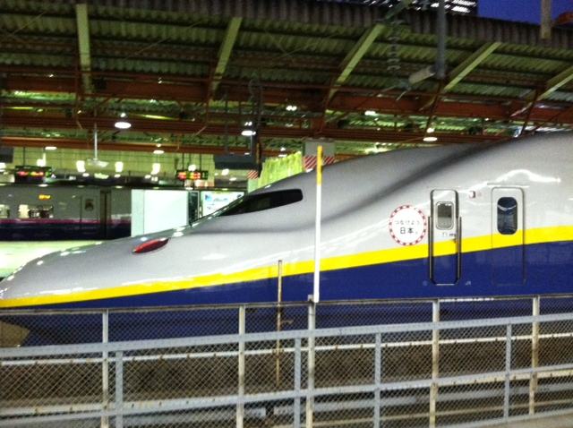 "The bullet train, or ""shinkansen."" It's so sleek and cool."